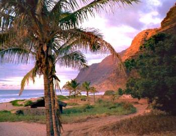 Sunset Picnics On Kauai