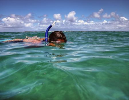 snorkeling poipu beach kauai
